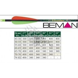 Beman ICS Hunter